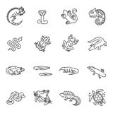 Reptiles and amphibians icons set. Line design Royalty Free Stock Images