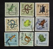 Reptiles and amphibians on post stamps royalty free stock images