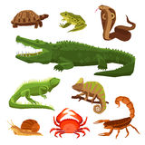 Reptiles And Amphibians Set. Reptiles and amphibians decorative set of cobra crocodile turtle snail scorpion crab icons in cartoon style  vector illustration Stock Images