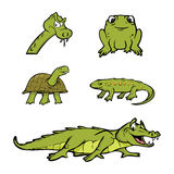 Reptiles Collection. Cartoon illustration of a Reptiles Collection Royalty Free Stock Image