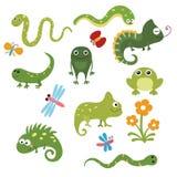 Reptiles divertidos determinados Fotografía de archivo