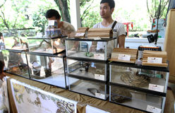 Reptiles exhibition. Various reptiles exhibited a city park in the city of Solo, Central Java, Indonesia Royalty Free Stock Image