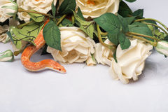 Reptiles on white background. Orange striped snake  with smooth skin near  beautiful  bunch of white roses    isolated on white background   with copy place Stock Photography