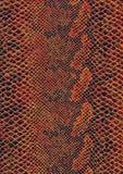 Reptilhautoberfläche stockbilder
