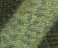reptilian fotografia stock