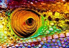 Reptilian oog Royalty-vrije Stock Afbeeldingen