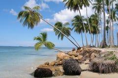 Repubblica dominicana, spiaggia Fotografia Stock Libera da Diritti