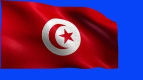 Repubblica tunisina, bandiera della Tunisia - CICLO senza cuciture illustrazione di stock