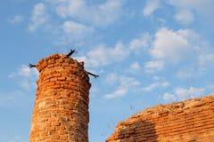 Republic of Belarus, Gomel region, town of Korma. Destroyed Kormyanskaya St. Nicholas Church. Republic of Belarus, Gomel region, town of Korma. Destroyed Royalty Free Stock Photography