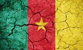 Republic of Cameroon flag Royalty Free Stock Photos