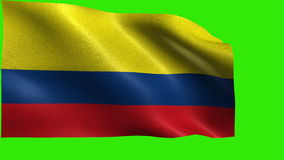 Republic of Colombia, Flag of Colombia, Colombian Flag - LOOP stock footage