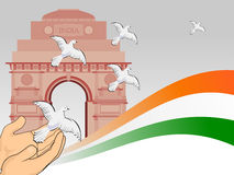 Republic day with flying pigeon in front of India. Royalty Free Stock Images