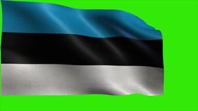 Republic of Estonia, Flag of Estonia, Estonian flag - LOOP stock video footage
