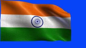 Republic of India, Flag of India - LOOP stock video