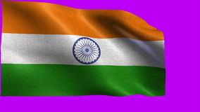 Republic of India, Flag of India - LOOP stock footage