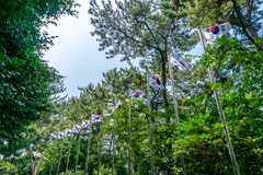 Republic of Korea or South Korea flags blown by the wind on top royalty free stock photography