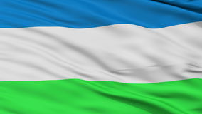 Republic of Molossia Micronation Close Up Waving Flag stock footage