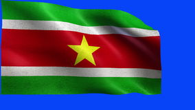 Republic of Surinam, Suriname de Republiek, bandeira do Suriname - LAÇO ilustração royalty free