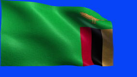 Republic of Zambia, Flag of Zambia - seamless LOOP vector illustration
