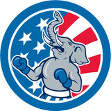 Republican Elephant Boxer Mascot Circle Cartoon Royalty Free Stock Photo