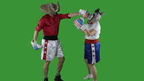 Republican knock-out punch. Man in elephant GOP mask delivering a knock-out punch to a woman in donkey Democrat mask against a green screen stock video
