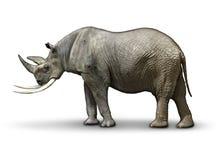 Republicano só em nome Imagem de Stock