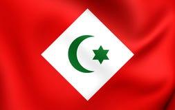 Republik av den Rif 3D flaggan 1921-1926 vektor illustrationer