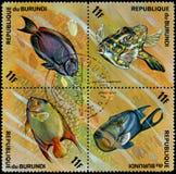 REPUBLIK BURUNDI - CIRCA 1974: die Stempel, gedruckt in Burundi, zeigt Fische: Balistes vetula, Holocanthus-ciliaris, Acanthurusb Lizenzfreies Stockbild