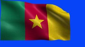 Republik Kamerun, Flagge von Kamerun - nahtlose SCHLEIFE stock video