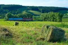republika czeska 1 rolnej Obrazy Stock