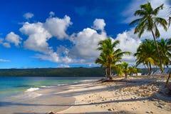 republika dominikańska Widok od plaży wyspa CayoLev Zdjęcie Stock