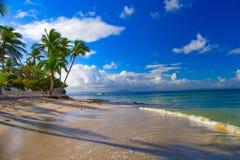 republika dominikańska Widok od plaży wyspa CayoLev Obraz Stock