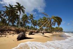 Republika Dominikańska, Punta Cana Obrazy Stock
