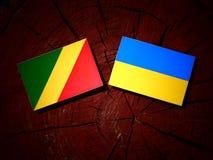 Republika Kongo flaga z kniaź flaga na drzewnym fiszorku ja Zdjęcia Stock