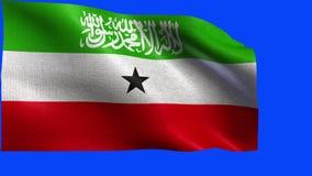 Republika Somaliland, flaga Somaliland - bezszwowa pętla ilustracja wektor