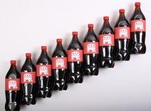 Republikanska elefanter på drinkflaskorna Arkivbild