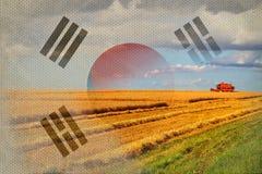 Republiken Korea Sydkorea jordbruk som skördar skördar Royaltyfria Bilder