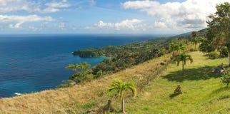 Republiken Trinidad och Tobago - Tobago ö - Castara fjärd och blommor - karibiskt hav Arkivfoton