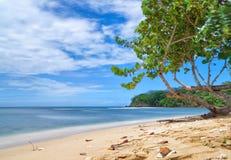 Republiken Trinidad och Tobago - Tobago ö - Mt Irvine fjärd - tropisk strand av det karibiska havet Royaltyfria Bilder