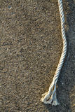 repvägg arkivfoton