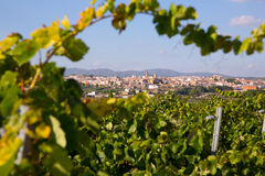 Requena in Valencia province a wine region of Spain Stock Images