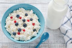 Requesón y leche de los productos lácteos del ` s del granjero Imagen de archivo libre de regalías