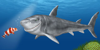 Requin illustration stock