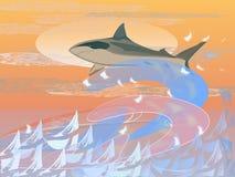 requin Photographie stock