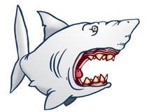 Requin affreux Photographie stock libre de droits