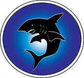 Requin blanc illustration libre de droits
