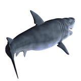 Requin 3d Photographie stock libre de droits