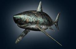 Requin d'ordinateur électronique de concept de sécurité de Digital d'isolement Photographie stock libre de droits