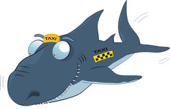 Requin d'un taxi. Dessin animé Photos libres de droits