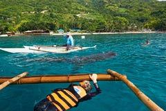 Requin de baleine observant dans Oslob, Philippines Photos stock